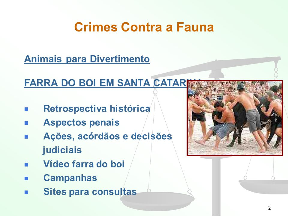 Crimes Contra a Fauna Animais para Divertimento