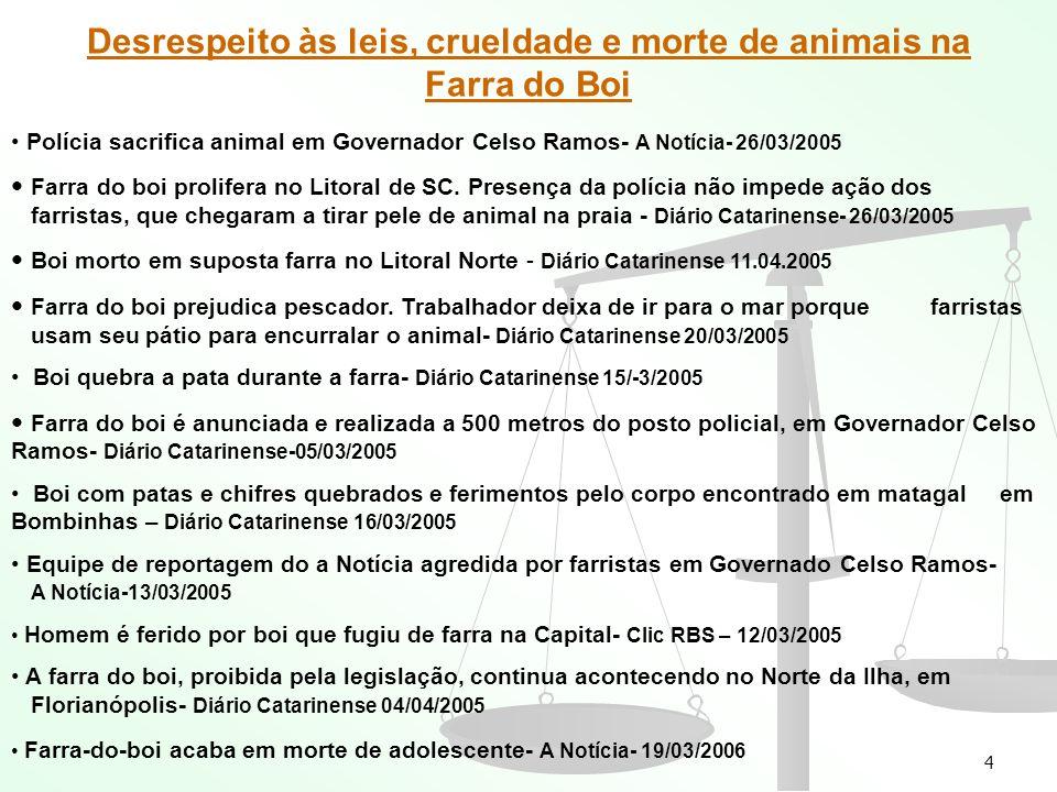 Desrespeito às leis, crueldade e morte de animais na Farra do Boi