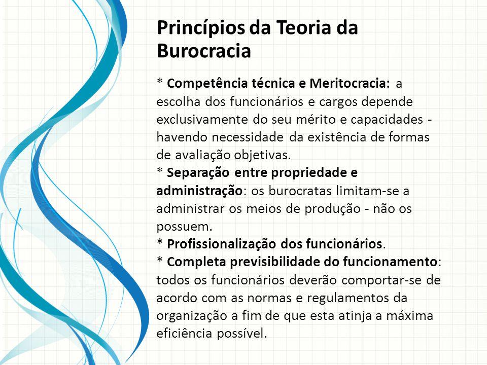 Princípios da Teoria da Burocracia