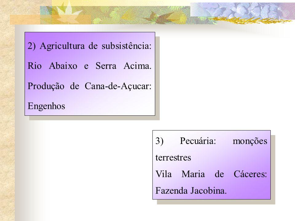 2) Agricultura de subsistência: Rio Abaixo e Serra Acima
