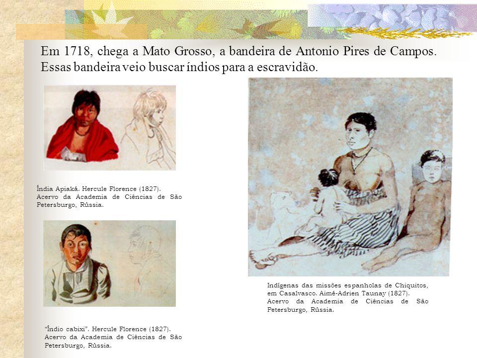 Em 1718, chega a Mato Grosso, a bandeira de Antonio Pires de Campos