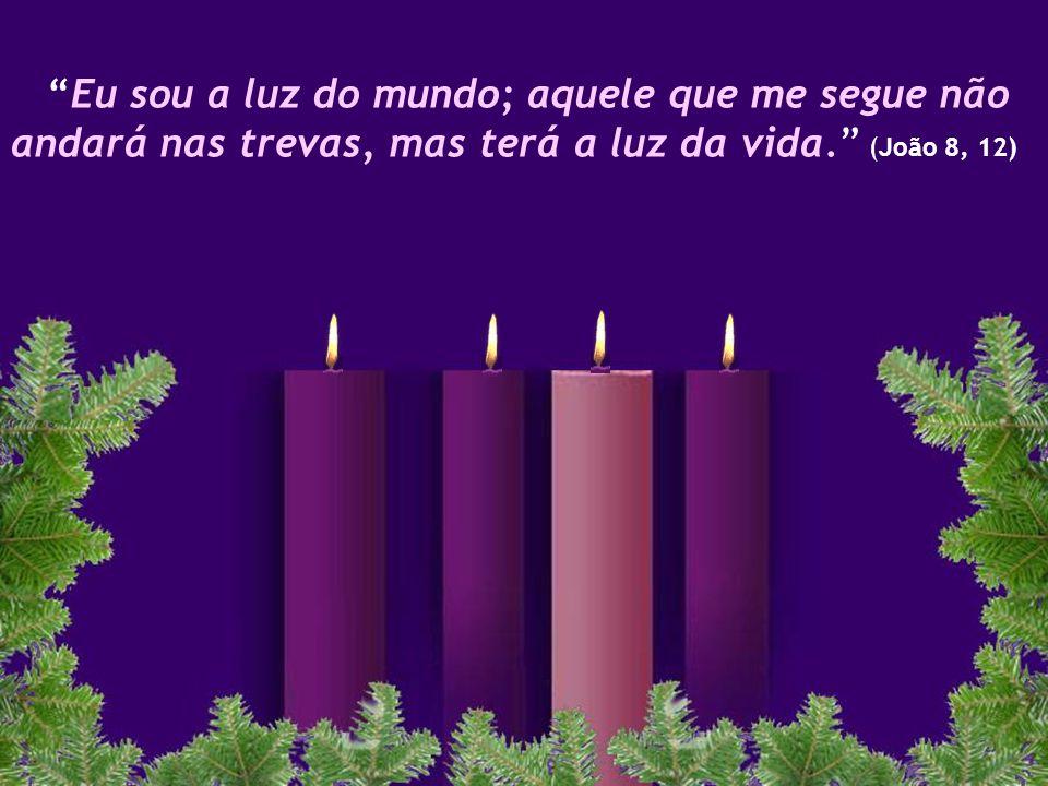 Eu sou a luz do mundo; aquele que me segue não andará nas trevas, mas terá a luz da vida. (João 8, 12)