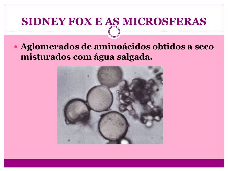 SIDNEY FOX E AS MICROSFERAS