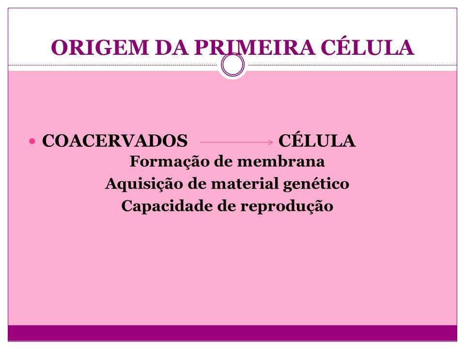 ORIGEM DA PRIMEIRA CÉLULA