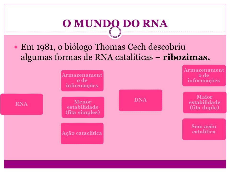 O MUNDO DO RNA Em 1981, o biólogo Thomas Cech descobriu algumas formas de RNA catalíticas – ribozimas.