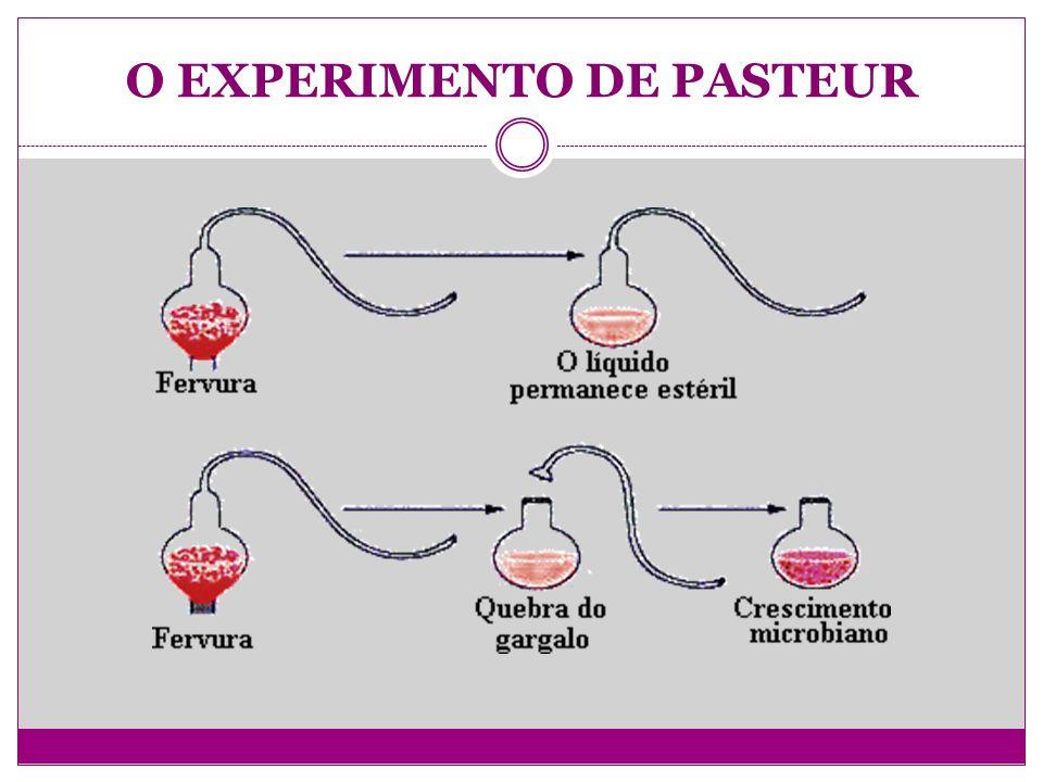 O EXPERIMENTO DE PASTEUR