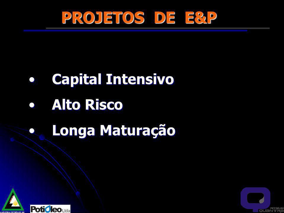PROJETOS DE E&P Capital Intensivo Alto Risco Longa Maturação