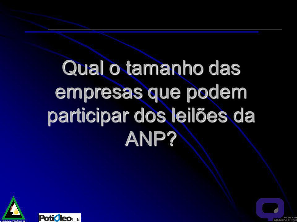 Qual o tamanho das empresas que podem participar dos leilões da ANP