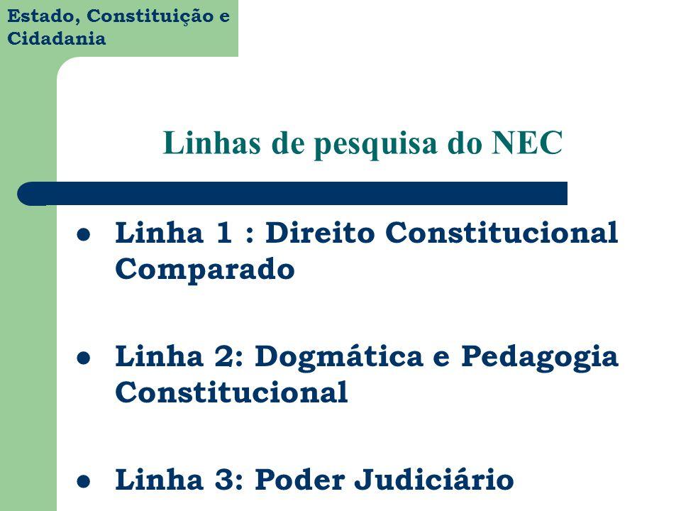 Linhas de pesquisa do NEC