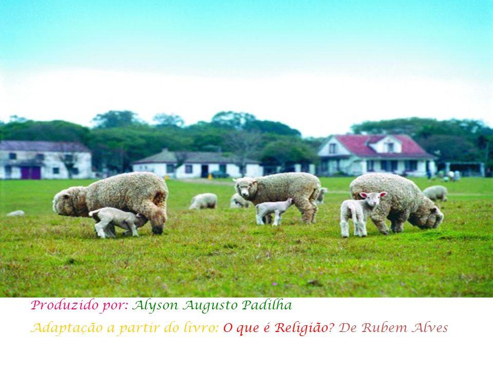 Produzido por: Alyson Augusto Padilha