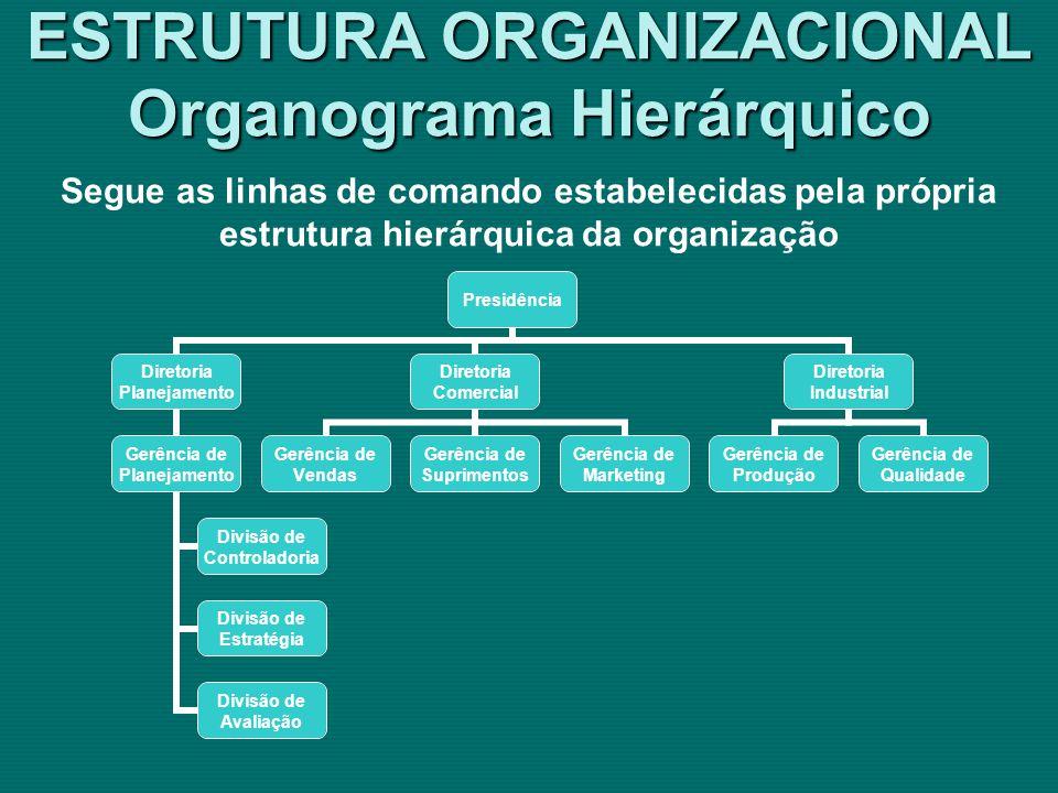 ESTRUTURA ORGANIZACIONAL Organograma Hierárquico