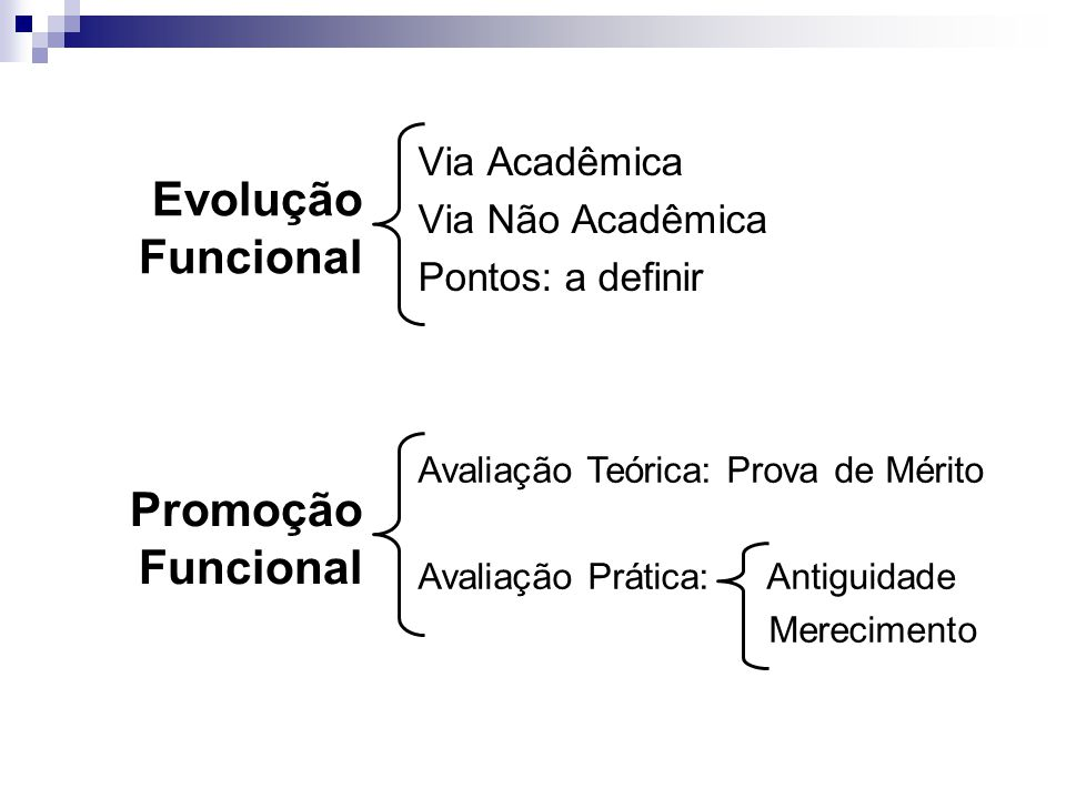 Evolução Funcional Promoção Funcional Via Acadêmica Via Não Acadêmica