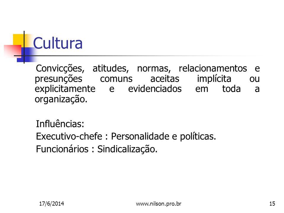 Cultura Convicções, atitudes, normas, relacionamentos e presunções comuns aceitas implícita ou explicitamente e evidenciados em toda a organização.