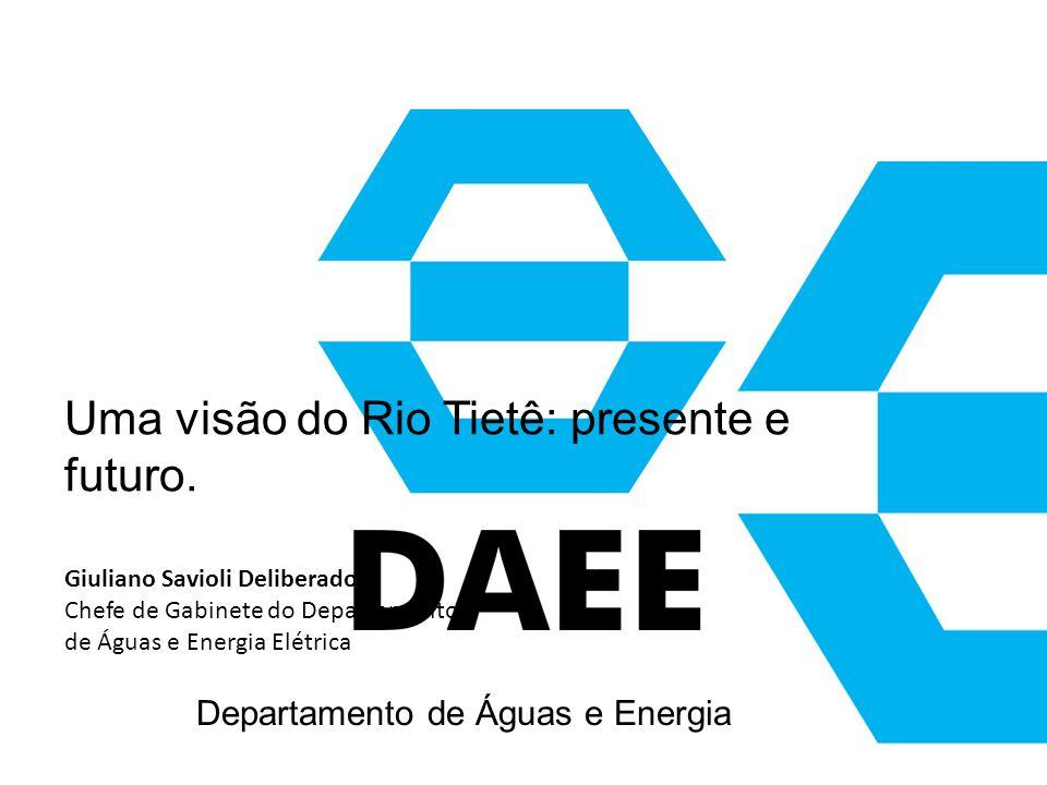 Uma visão do Rio Tietê: presente e futuro.