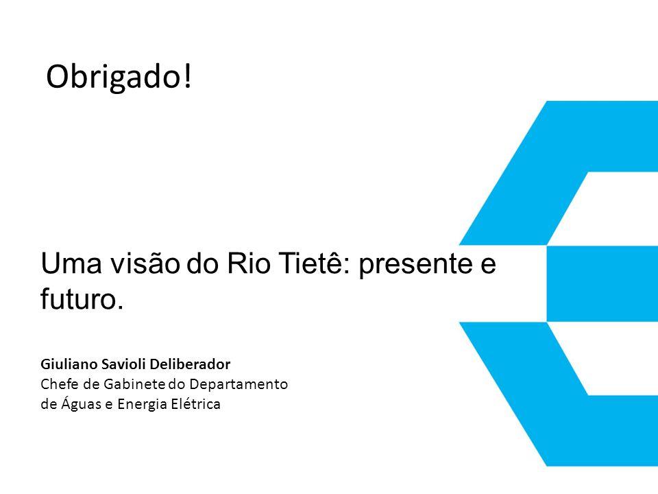 Obrigado! Uma visão do Rio Tietê: presente e futuro.