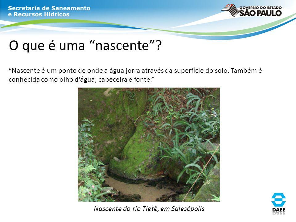 Nascente do rio Tietê, em Salesópolis
