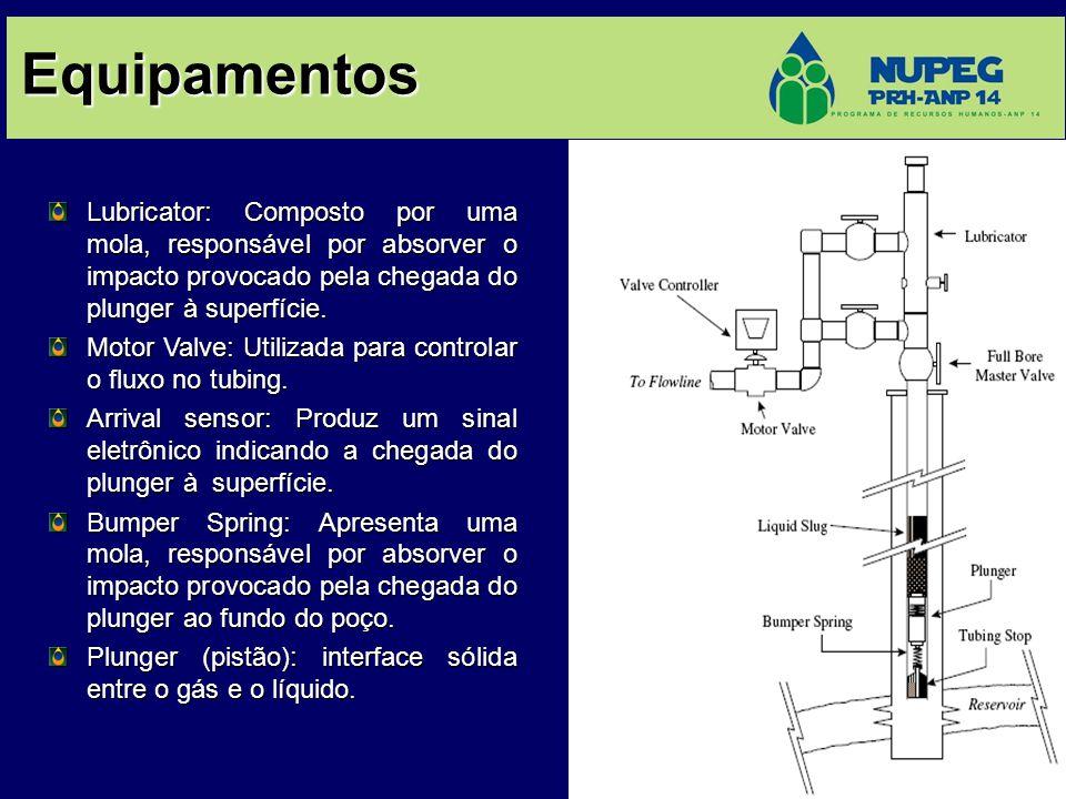 Equipamentos Lubricator: Composto por uma mola, responsável por absorver o impacto provocado pela chegada do plunger à superfície.