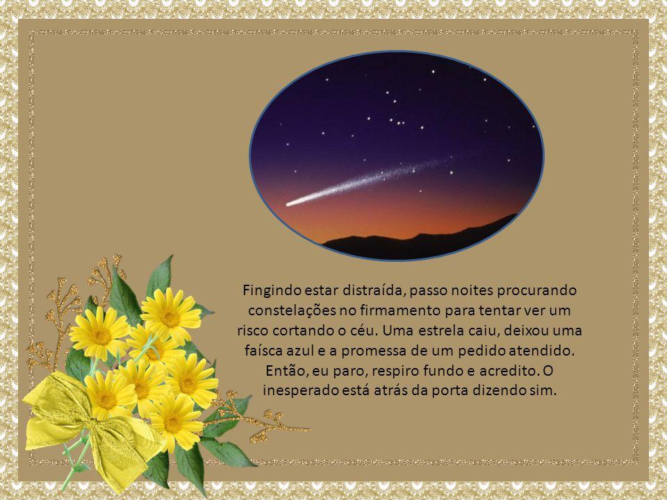 Fingindo estar distraída, passo noites procurando constelações no firmamento para tentar ver um risco cortando o céu.