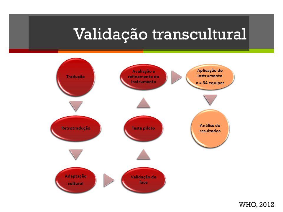 Validação transcultural