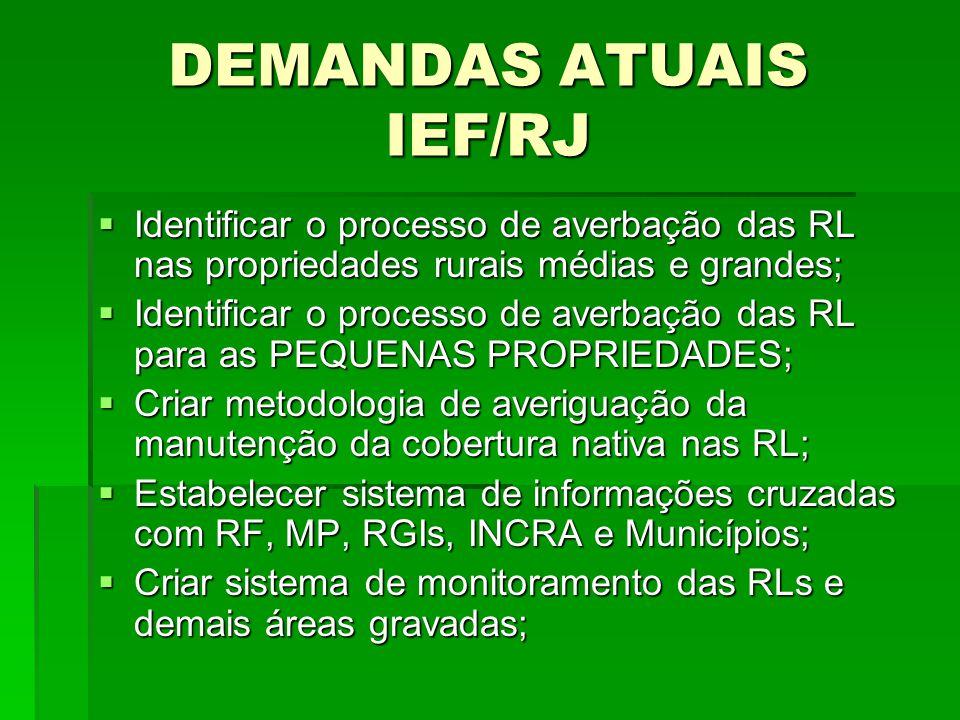 DEMANDAS ATUAIS IEF/RJ