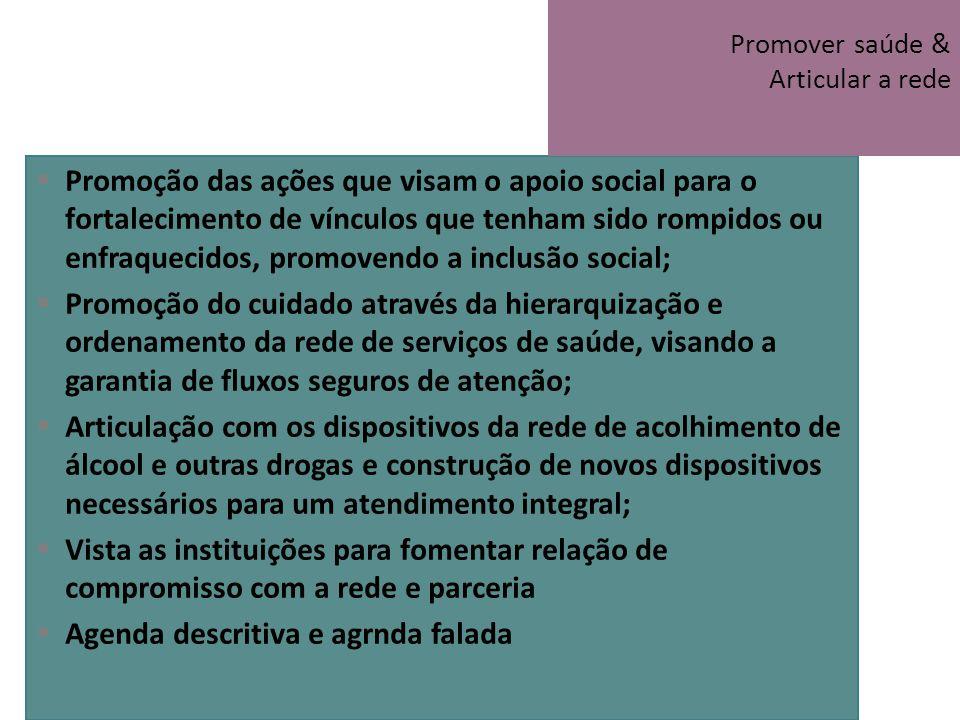 Promover saúde & Articular a rede
