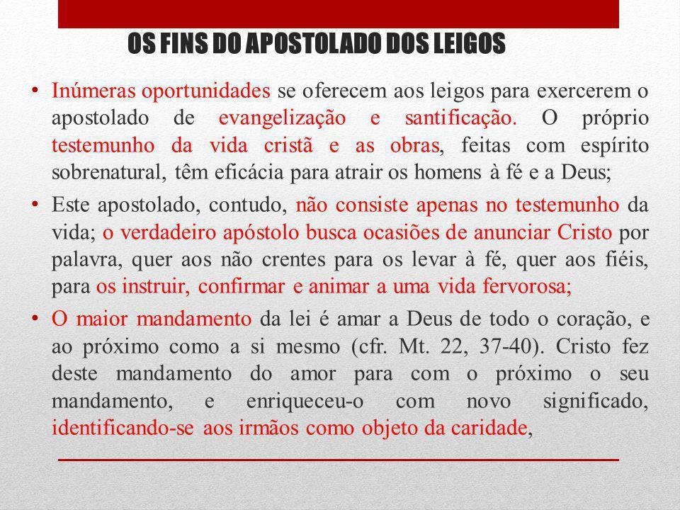 OS FINS DO APOSTOLADO DOS LEIGOS