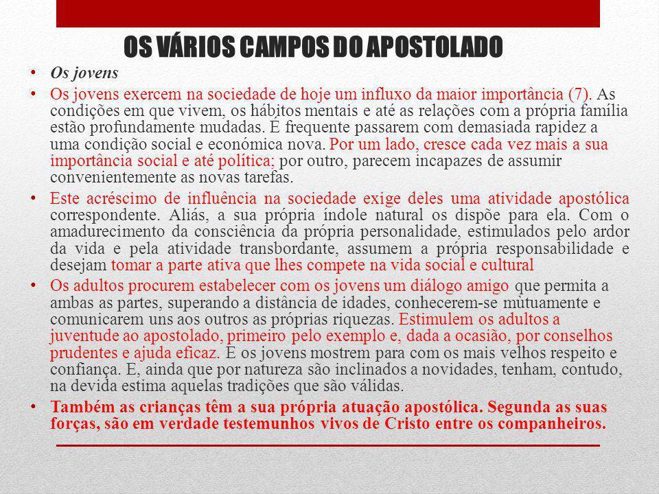 OS VÁRIOS CAMPOS DO APOSTOLADO