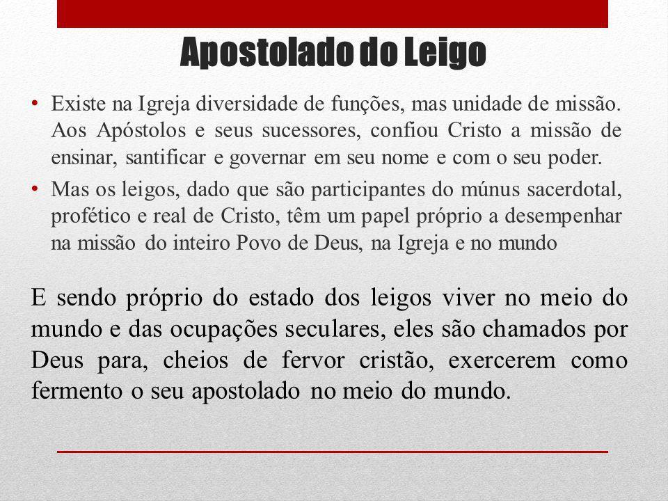 Apostolado do Leigo