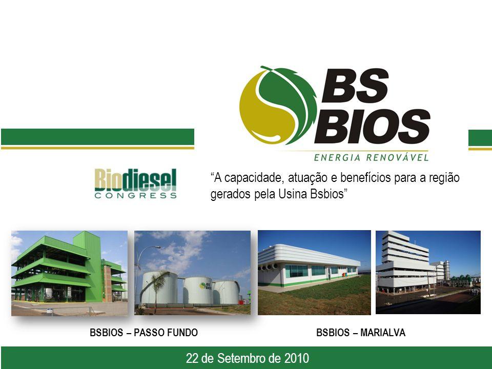 A capacidade, atuação e benefícios para a região gerados pela Usina Bsbios