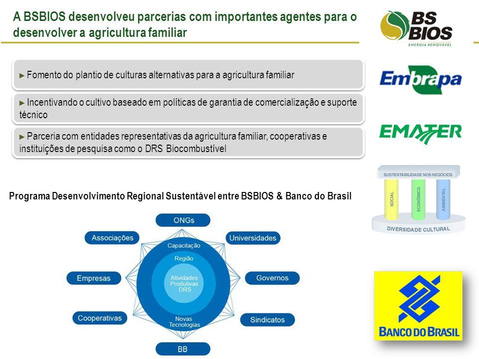 A BSBIOS desenvolveu parcerias com importantes agentes para o desenvolver a agricultura familiar