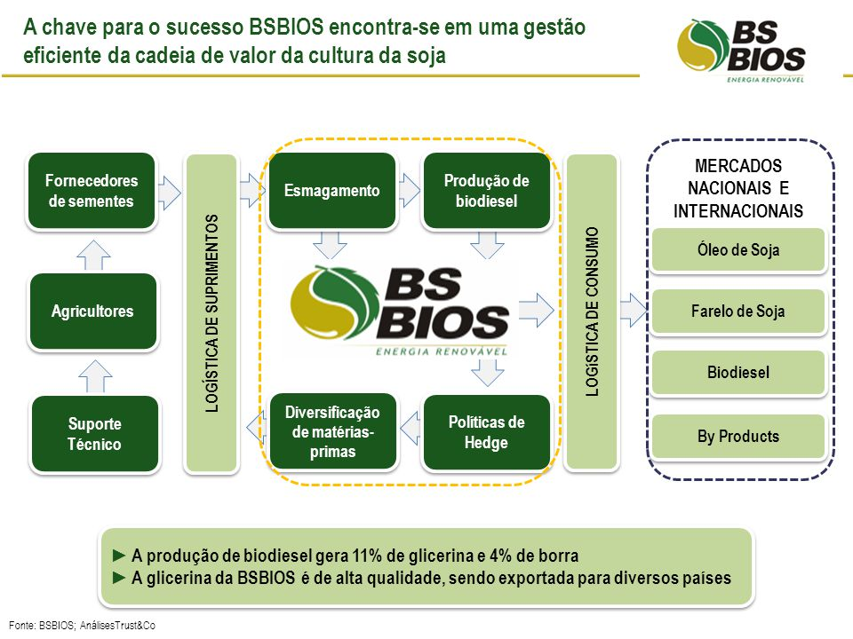 A BSBIOS Passo Fundo no contexto dos fatores críticos de sucesso