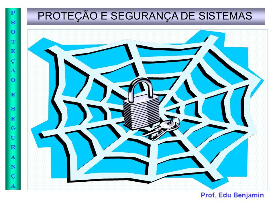 PROTEÇÃO E SEGURANÇA DE SISTEMAS
