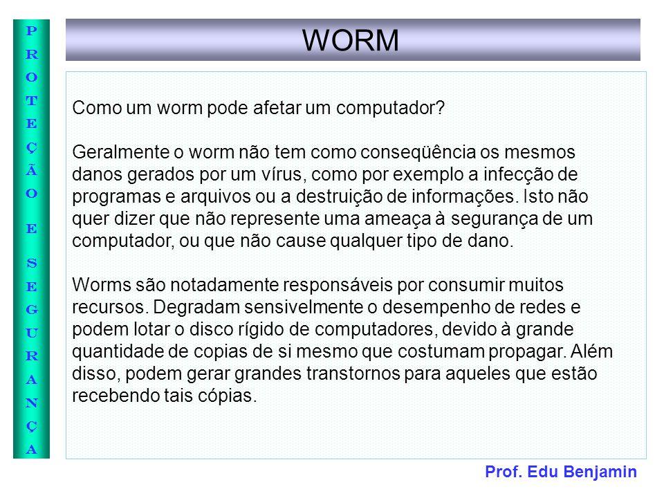 WORM Como um worm pode afetar um computador