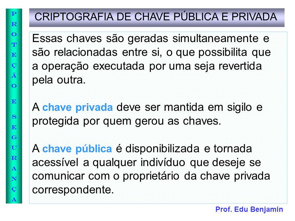 CRIPTOGRAFIA DE CHAVE PÚBLICA E PRIVADA
