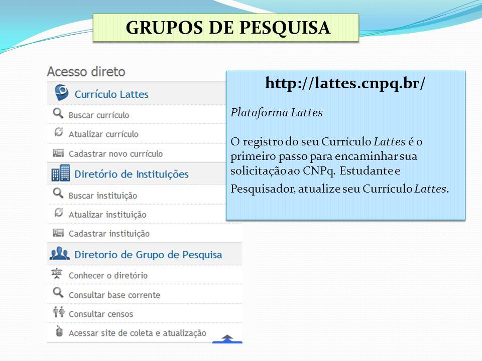 GRUPOS DE PESQUISA http://lattes.cnpq.br/ Plataforma Lattes