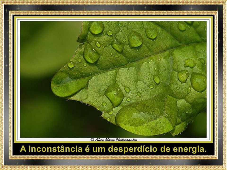 A inconstância é um desperdício de energia.