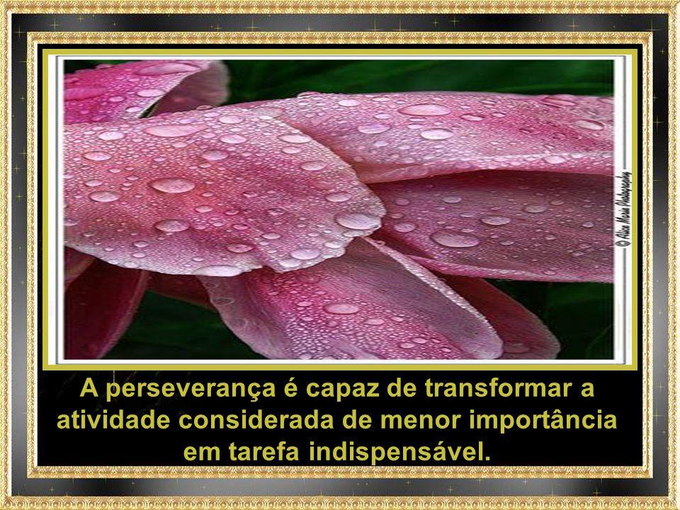 A perseverança é capaz de transformar a atividade considerada de menor importância em tarefa indispensável.