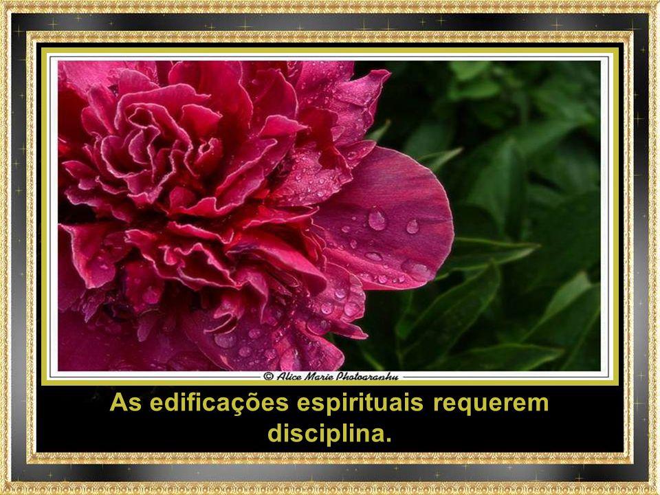 As edificações espirituais requerem disciplina.