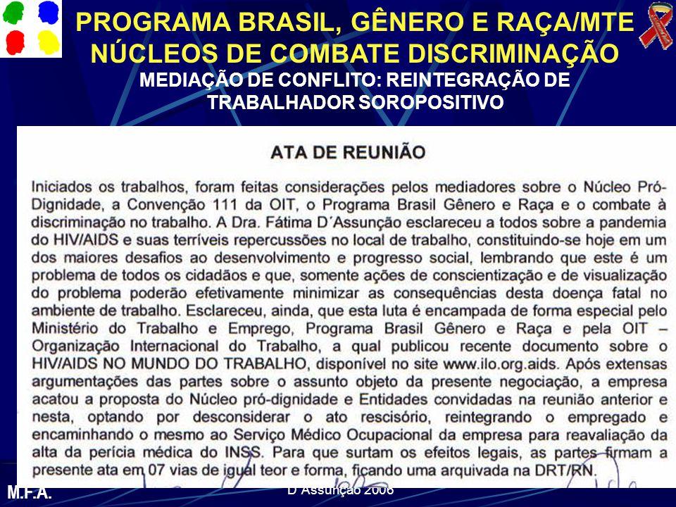 PROGRAMA BRASIL, GÊNERO E RAÇA/MTE NÚCLEOS DE COMBATE DISCRIMINAÇÃO