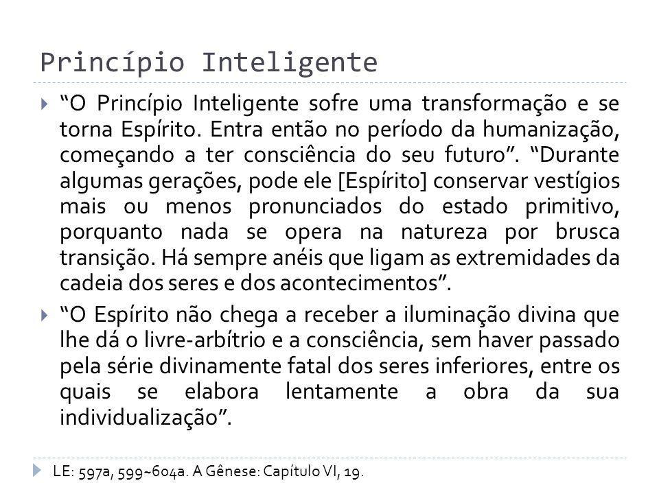 Princípio Inteligente