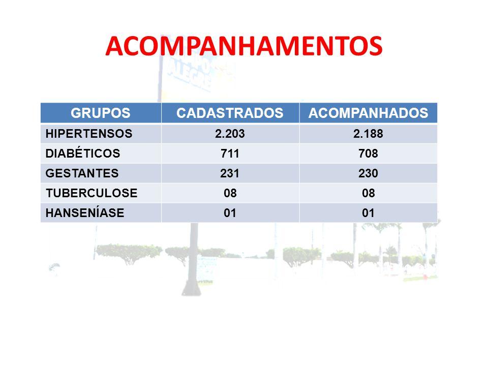 ACOMPANHAMENTOS GRUPOS CADASTRADOS ACOMPANHADOS HIPERTENSOS 2.203