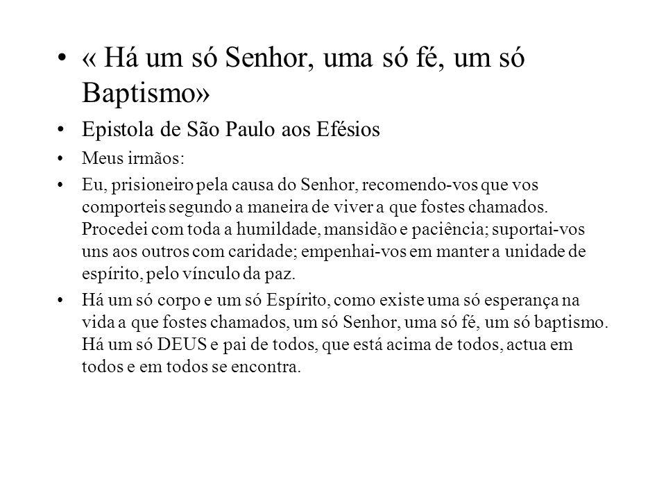 « Há um só Senhor, uma só fé, um só Baptismo»