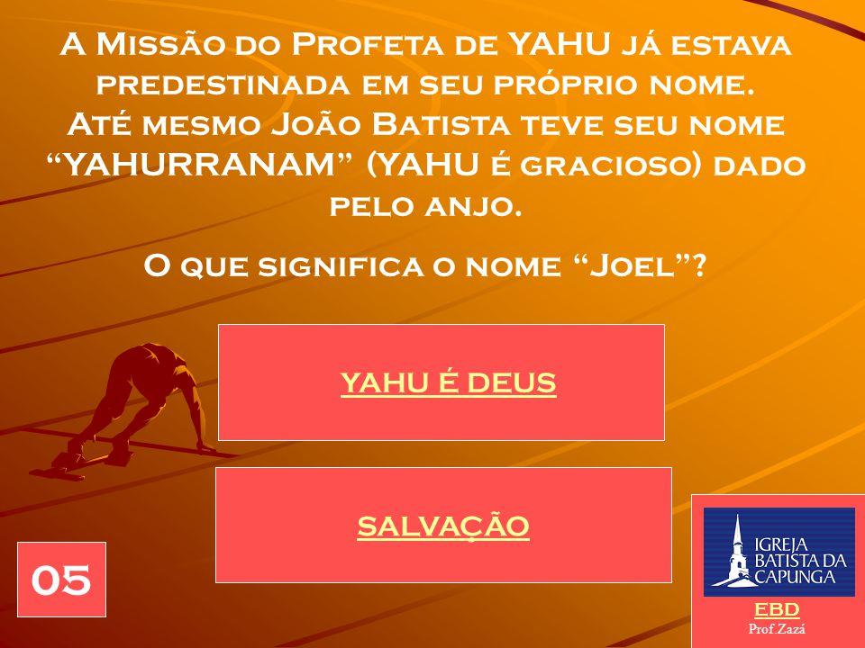 O que significa o nome Joel