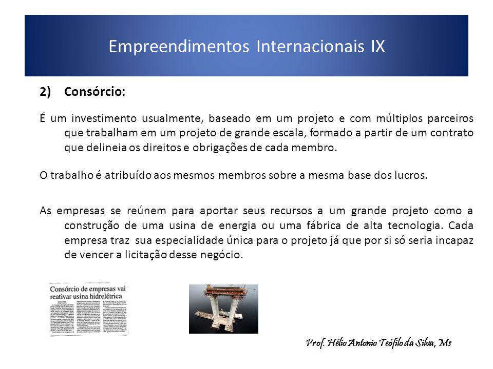 Empreendimentos Internacionais IX