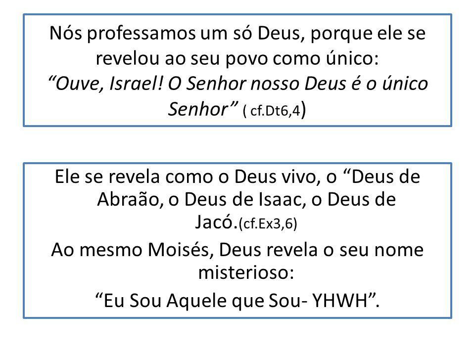 Nós professamos um só Deus, porque ele se revelou ao seu povo como único: Ouve, Israel! O Senhor nosso Deus é o único Senhor ( cf.Dt6,4)
