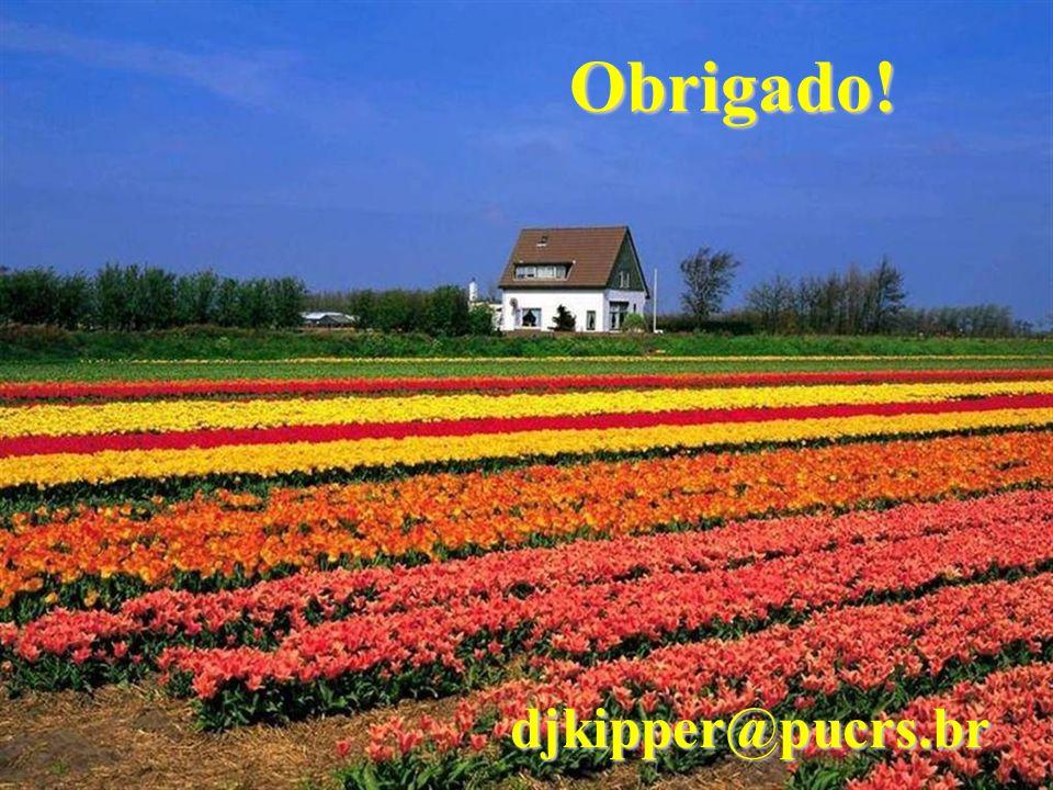 Obrigado! djkipper@pucrs.br