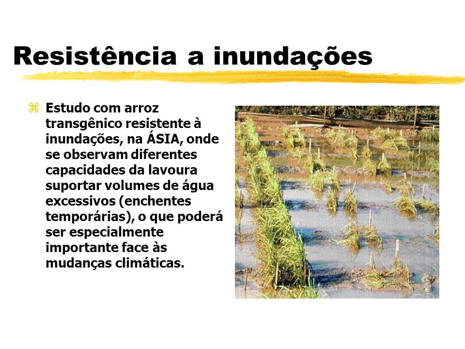 Resistência a inundações