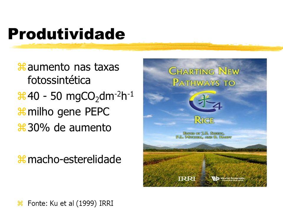 Produtividade aumento nas taxas fotossintética 40 - 50 mgCO2dm-2h-1