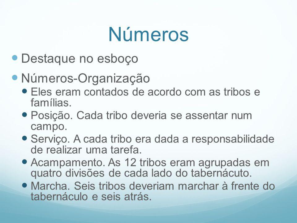 Números Destaque no esboço Números-Organização