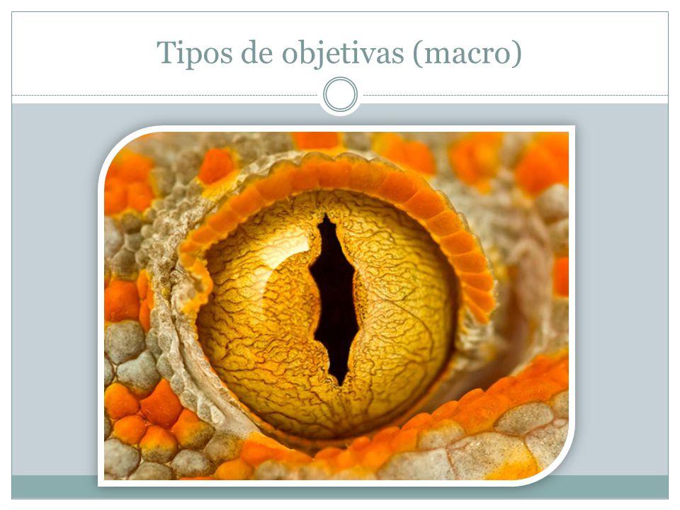 Tipos de objetivas (macro)